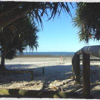 Pandanus Beach - Wynnum