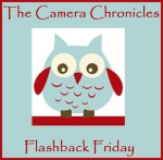 The Camera Chronicles - Flashback Friday