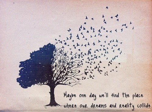 dreams-and-reality