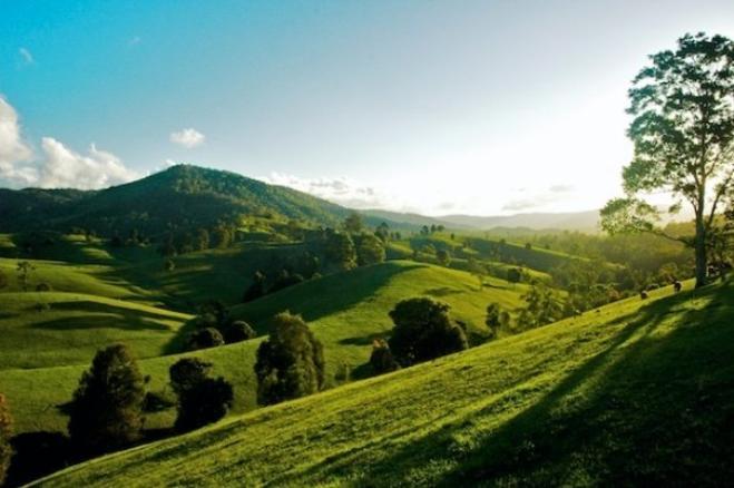 sunshine-coast-hinterland