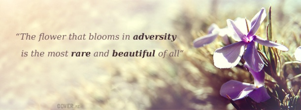 297-the-flower-that-blooms-in-adversity-is-the-most-rare-and