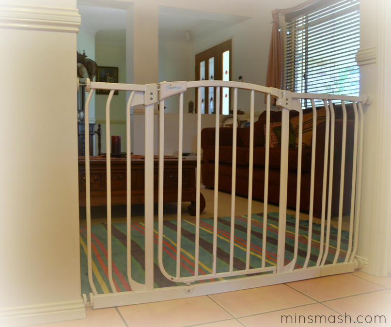 Baby Gate 1