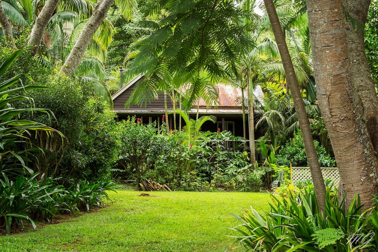 cottage, possum creek, hinterland, australia, nsw