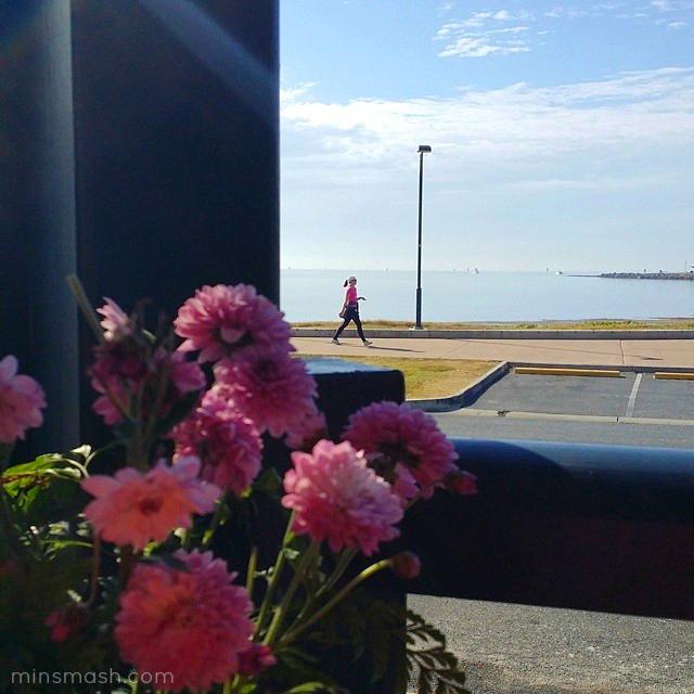 Coffee View, Moreton Bay